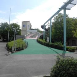 東山動物園彩景橋補強及び補修工事(その3)